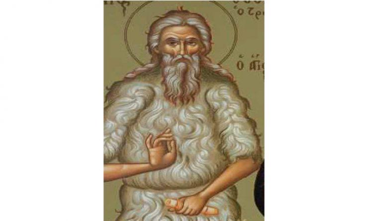 Όσιος Θεόδωρος ο Τριχινάς | proseuxi.gr