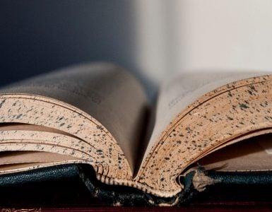 Πράξεις Αποστόλων Κεφάλαιο 2 Αγία Γραφή Καινή Διαθήκη Επιστολές Παύλου Προς Ρωμαίους Κεφάλαιο 1 Ψαλμοί Ψαλμός 28 Ψαλμοί Ψαλμός 35 Ψαλμοί Ψαλμός 44 Ψαλμοί Ψαλμός 48