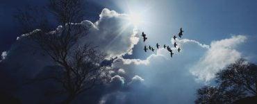 αρετές της ψυχής παρατήρηση στους άλλους