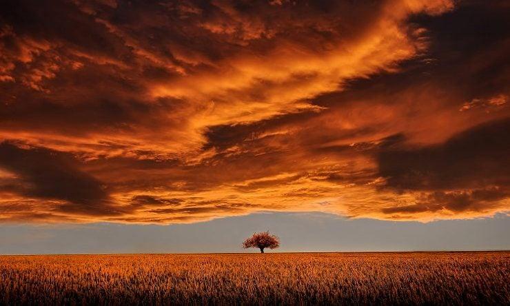 Η ομορφιά της σιωπής μεγάλα θαύματα