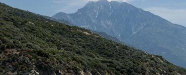 Η ζωή των μοναχών του Αγίου Όρους
