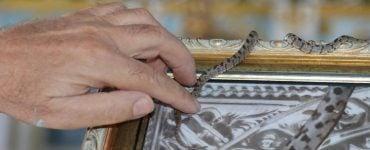 Εμφανίστηκαν τα πρώτα φιδάκια της Παναγίας στην Κεφαλονιά