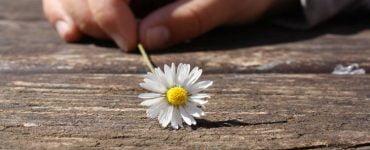 Πότε η ζωή είναι ευχάριστη και γλυκιά;