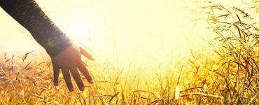 Άγιος Γρηγόριος Παλαμάς: Η υγεία της ψυχής
