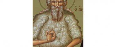 Εορτή Οσίου Θεοδώρου του Τριχινά