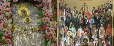 Εορτή Συνάξεως Θαυματουργού Εικόνος Παναγίας Διασωζούσης